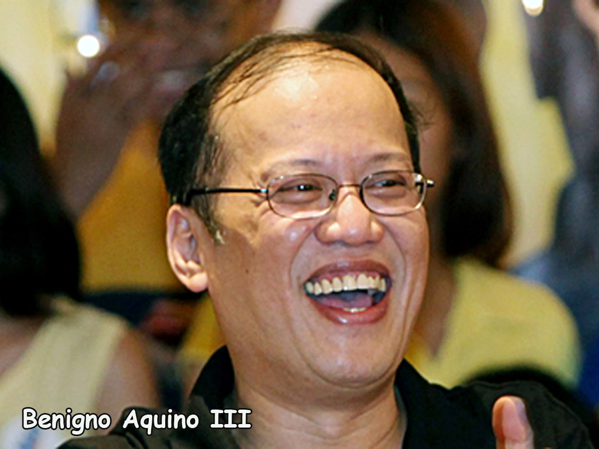 Benigno Aquino III, Mar Roxas